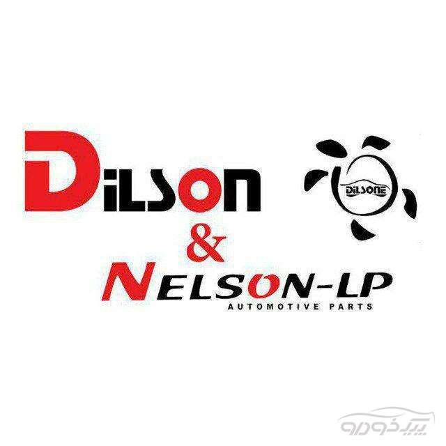 نلسون و دیلسون
